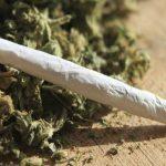 marijuana 108 grammi di marijuana