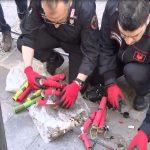 allarme bomba carabinieri artificeri