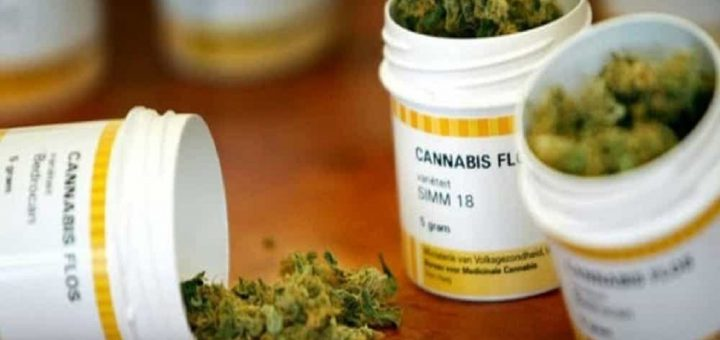 radicali Cannabis terapeutica