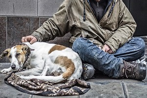 senzatetto con i loro cani