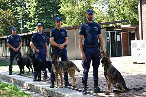 Cinque arresti in tre giorni polizia locale, cinofili