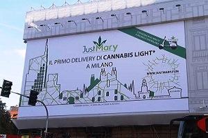 Cannabis light a domicilio
