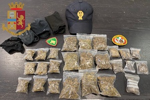 Cani poliziotto trovano deposito di droga al Parco Sempione