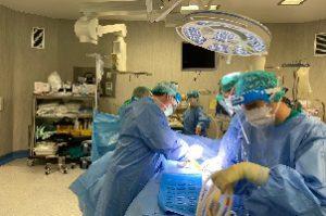 sesto chirurgia ospedale