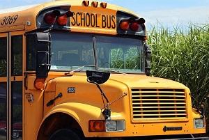 bus attentatore