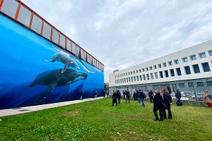 Nuovo murales per la Piscina Procida