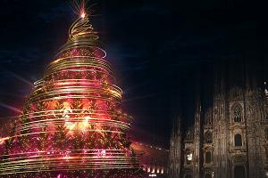 Diciotto alberi illuminano le feste all'insegna della sostenibilità