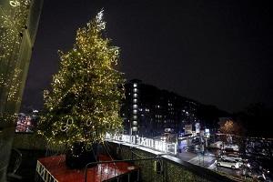 Acceso l'albero davanti all'ospedale in Fiera