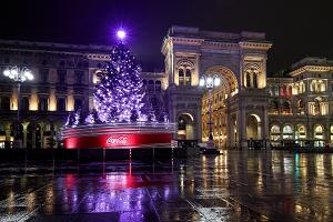 Acceso l'albero in piazza Duomo