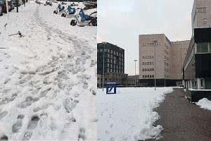 La neve fa schiantare Sala sul Verde