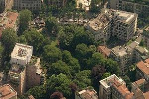 Il Comune chiede a MM uno studio per la gestione del verde