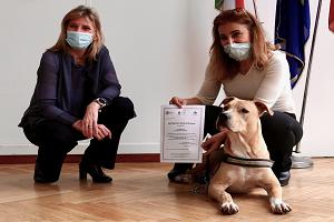 Consegnati i primi Patentini cane speciale