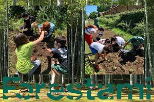 Scuola Forestami: progetto di formazione sulla forestazione urbana