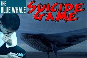 Blue Whale: ragazza condannata a un anno e mezzo