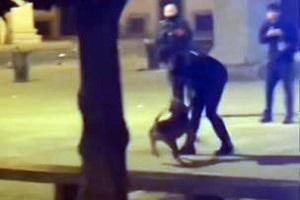 Carabiniere azzannato spara al cane di uno spacciatore marocchino