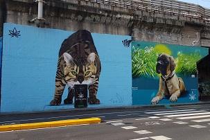 murales pontano